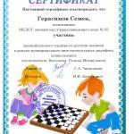 Герасимов Семен-шашки 2018