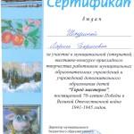 Шадрина-город мастеров 2015