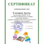 Елизаров шашки-2019
