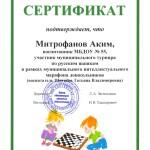 Митрофанов шашки 2019