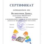 сертификат шашки-2020 Великсонов