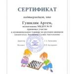 сертификат шашки-2020 Гушилик